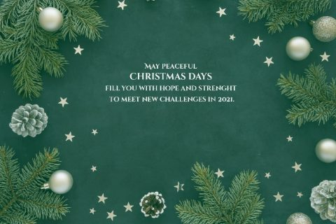 May Peaceful Christmas Days fill you with hope and strenght to meet new challenges in 2021