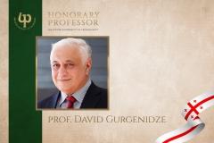 prof. David Gurgenidze
